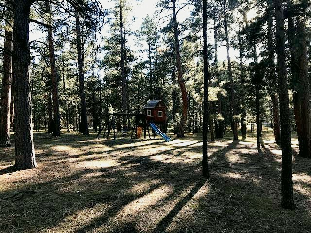 Side lot of Wissler Ranch home complete with playhouse and swing set