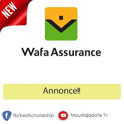 Annonce!! WAFA ASSURANCE recrute des démarcheurs sur Agadir, Marrakech, Nador, Oujda et Tanger