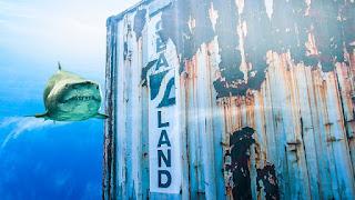 Pencemaran lingkungan laut