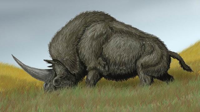 "Un análisis de ADN revela impactantes secretos del extinto ""unicornio siberiano"""