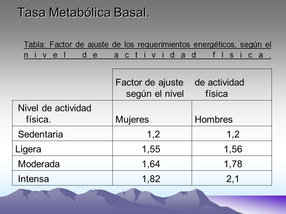 calculo indice de metabolismo basal