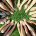 ACM biedt meer mogelijkheden voor samenwerking tussen bedrijven om klimaatdoelen te halen