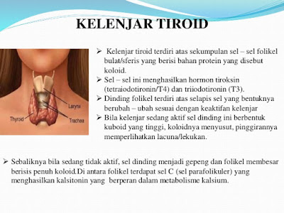 obat tiroid