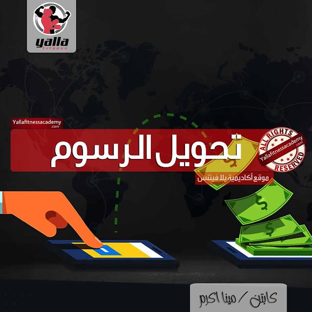 خدمة الحوالة البنكية من خارج مصر