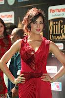 Videesha in Spicy Floor Length Red Sleeveless Gown at IIFA Utsavam Awards 2017  Day 2  Exclusive 12.JPG