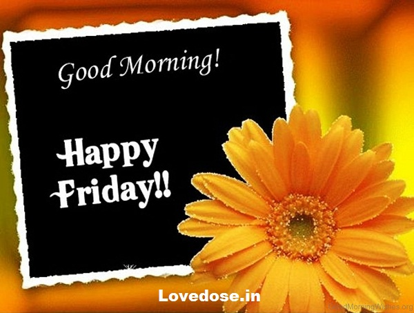 good morning happy friday quotes