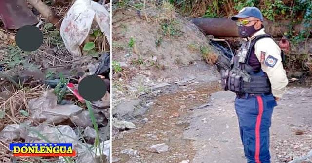 Hallado descuartizado en Caricuao fue asesinado por sus propios hijos y su yerno