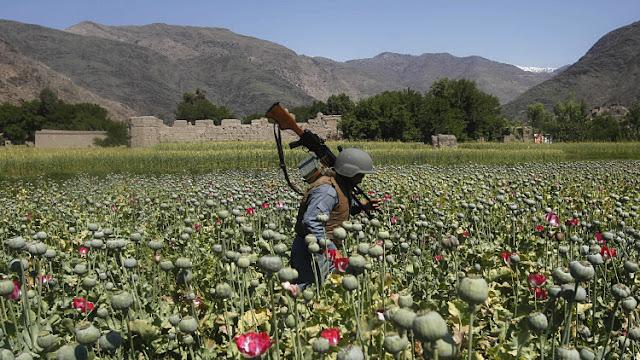 La ruta del opio de Azerbaiyán