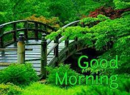 good morning images with nature hd