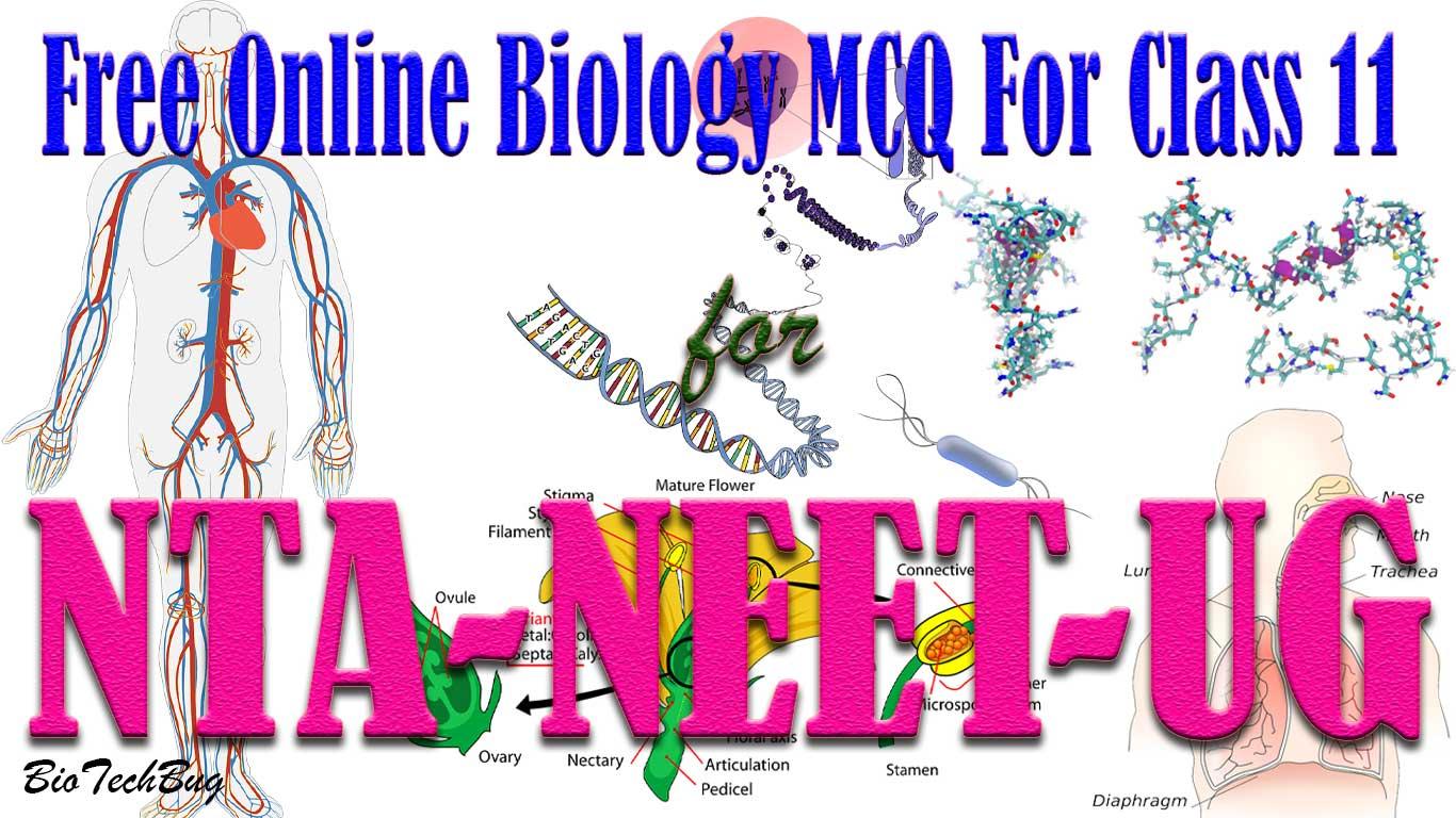 class 11 biology mcq free online test