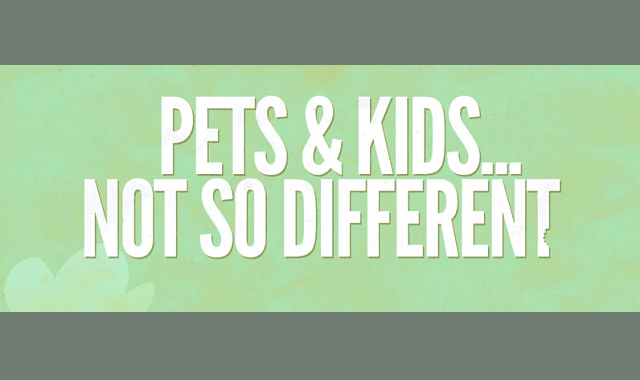 Pets And Kids Not So Different