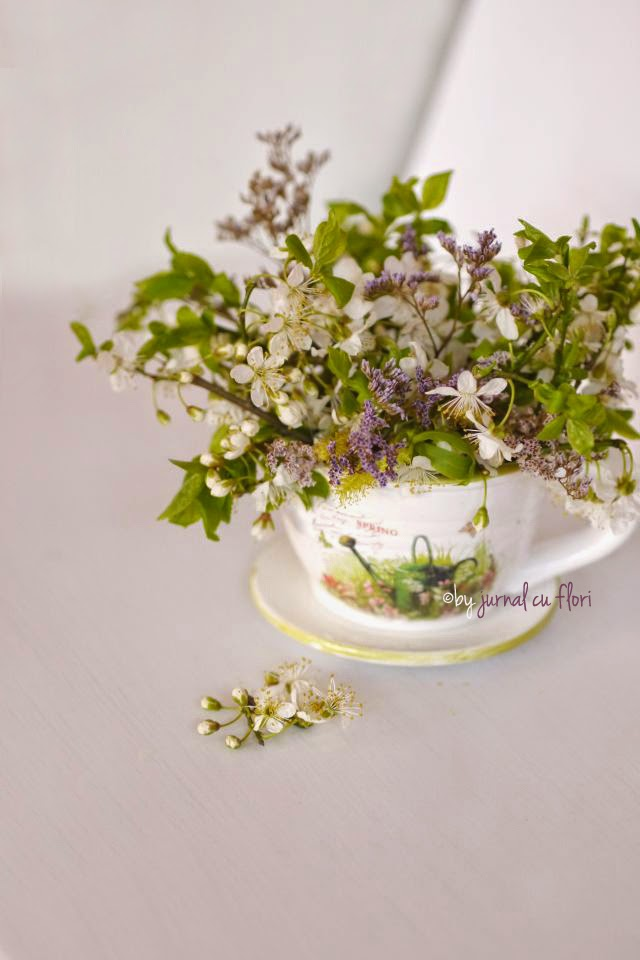 ceasca cu flori de gradina martie aprilie primavara, tea party spring  flower cup white