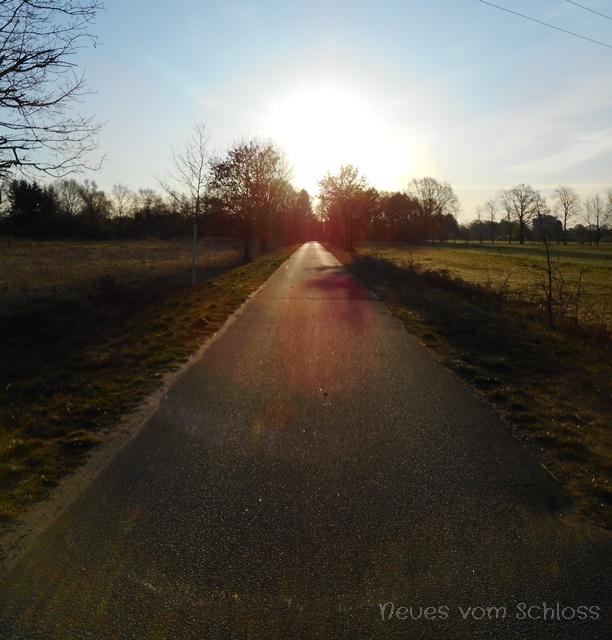 12 von 12 (April 2020)- neuesvomschloss.blogspot.de