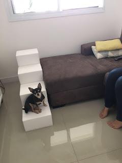 escadas para cama e sofá