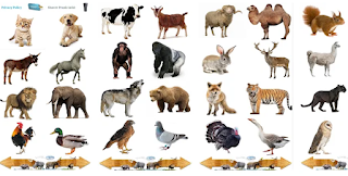 Animal sounds-Android Apps For Fun in 2020