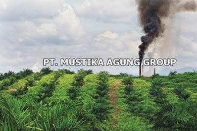 Lowongan Kerja PT. Mustika Agung Group Pekanbaru Juli 2019