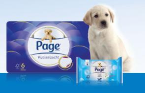 Page Vochtig Toiletpapier.Page Kussenzacht En Vochtig Toiletpapier 100 Gta T M 30 4