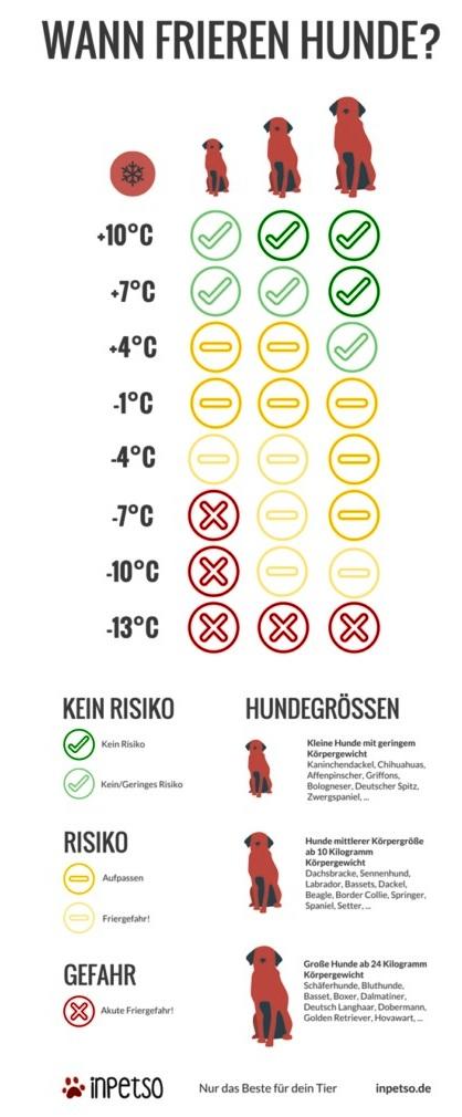 Traumzaubereien: Hundskälte - ab wann friert welcher Hund? Kälte ...