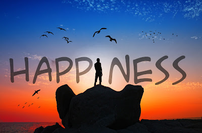 An Overview of Happiness