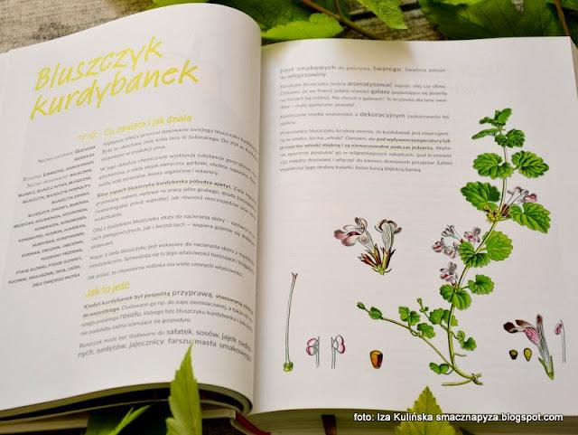 konkurs z książką , recenzja , książka kulinarna , poradnik , książka o ziołach , rośliny dzikie w kuchni , dzikusy , konkursy kulinarne , wygraj książkę