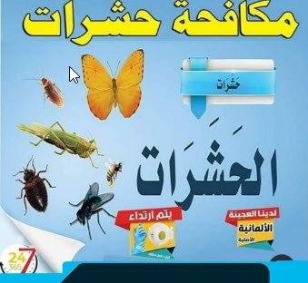 أهم شركات مكافحة حشرات