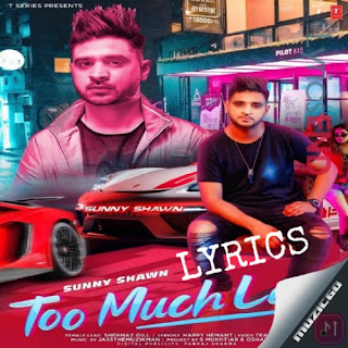 Too Much Late Lyrics - Sunny Shawn Punjab Song [2019]