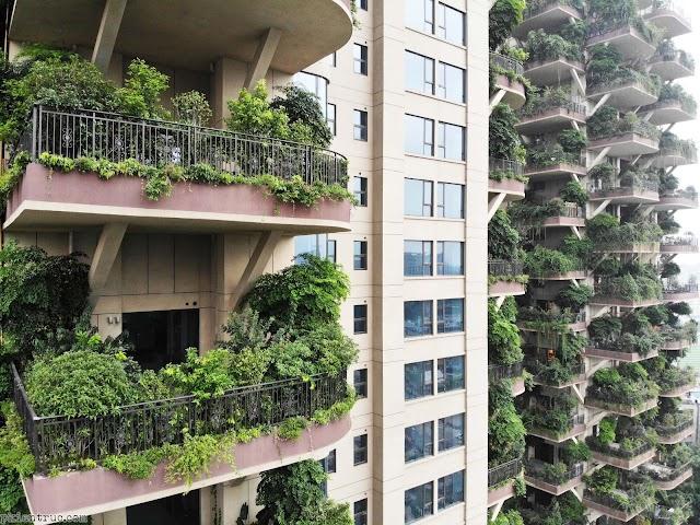 Ngỡ ngàng khu chung cư biến thành khu rừng thẳng đứng 30 tầng