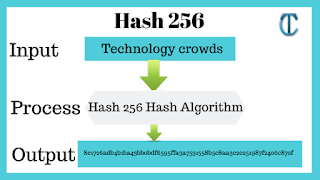 SHA 256: Compute a SHA 256 hash using C# for effective security