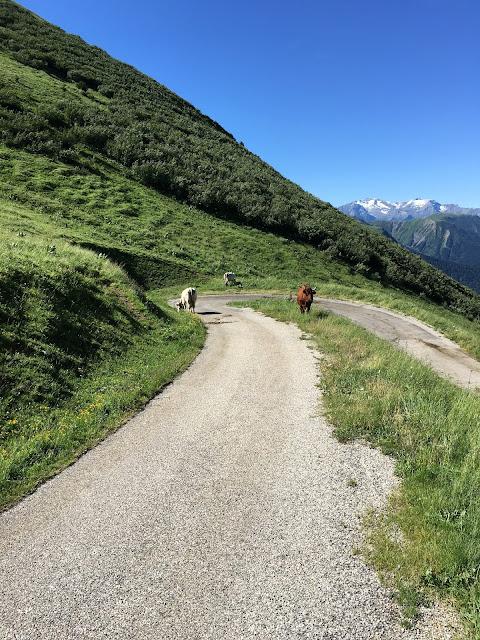 Col du Sabot descent
