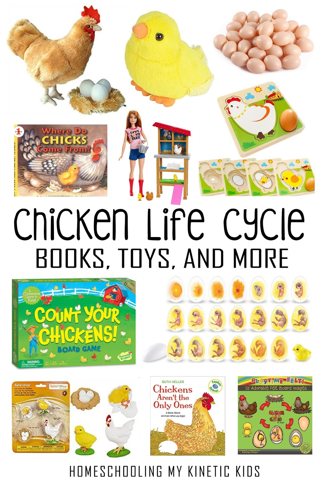 Chicken Life Cycle 3 Part Cards