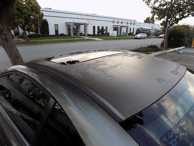 Microchecking paint and rust on roof prior to repairs at Almost Everything Auto Body.