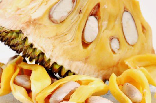 Biji buah nangka matang