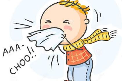 Berikut 6 Tips Cara Mengatasi Saat Hidung Tersumbat