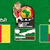 مشاهدة مباراة بنين والكاميرون بث مباشر بتاريخ 02-07-2019 كأس امم افريقيا 2019