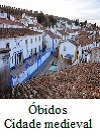 Óbidos. Um castelo no Brasil