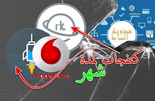 فودافون مصر