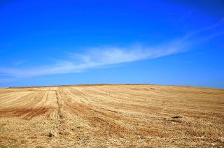 Campo castellano contaste azul-amarillo