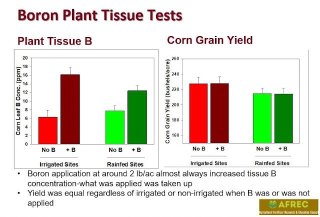 boron plant tissue analysis AFREC