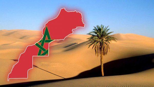 قضية الصحراء المغربية وملف النزاع بها محور الجلسة الشهرية حول السياسة العامة بمجلس النواب