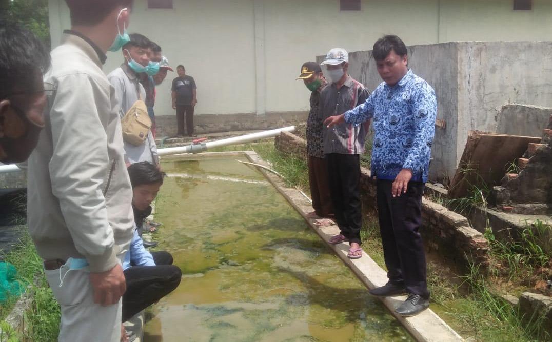 Jika Ingin Berhasil Budidaya Ikan, DKP Mesuji Beri  Trik dan Koncinya