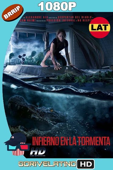 Infierno en la Tormenta (2019) BRRip 1080p Latino-Ingles MKV