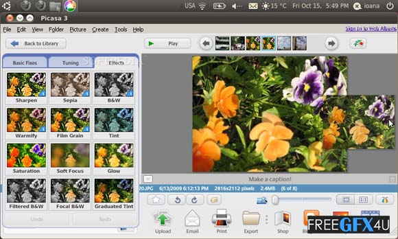 Picasa Photo v3.9 Build 141.259