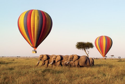 The Top 10 Things To Do On The Masai Mara Kenya