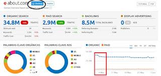Reporte general del dominio - se indica la caída de tráfico vía organico