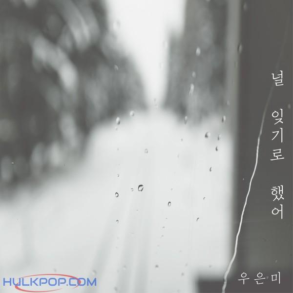 Woo Eun Mi – 널 잊기로 했어 – Single