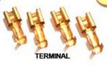 Terminal kaki kuningan