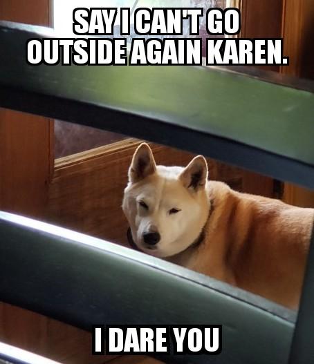 I dare you Karen