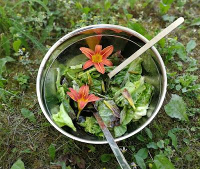 Salat mit Taglilien