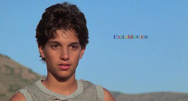 The Karate Kid 1984 Dual Audio Hindi-English 720p BluRay