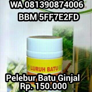 Obat Batu Ginjal De Nature Indonesia